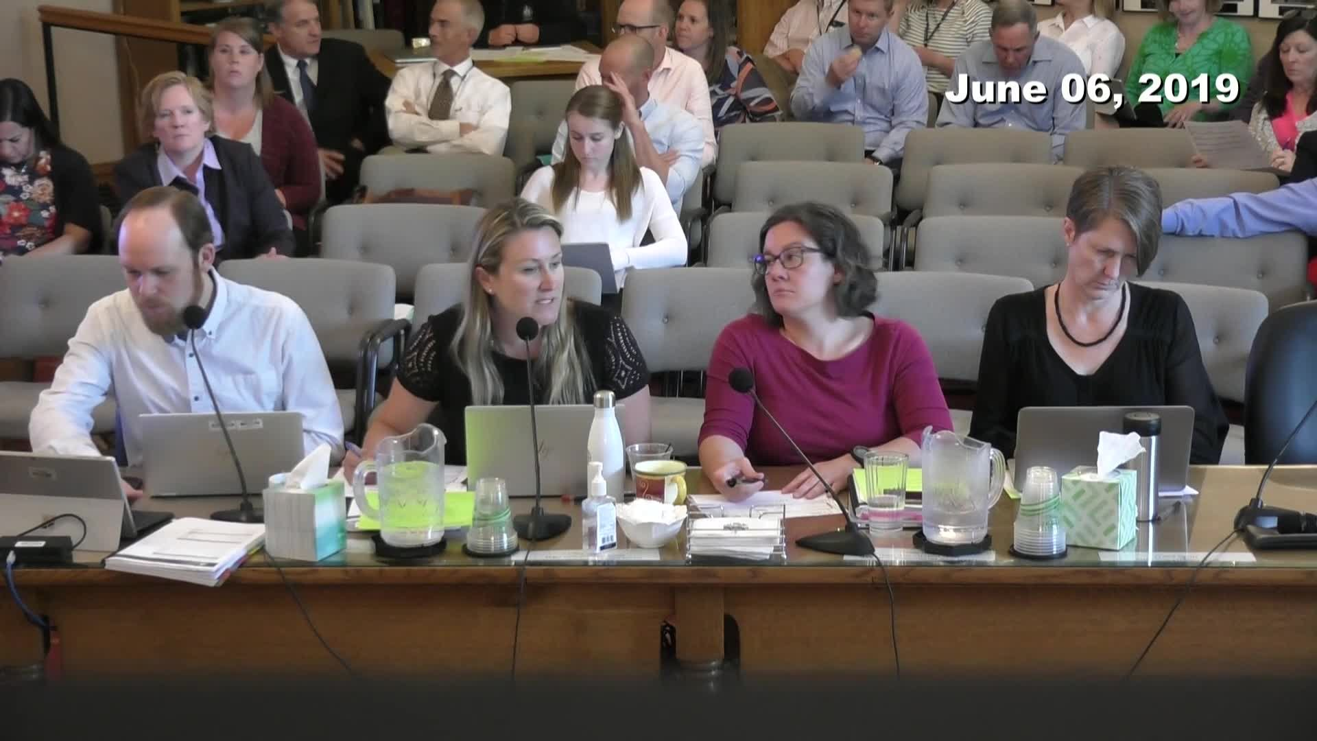 City Council Work Session - 06/06/2019