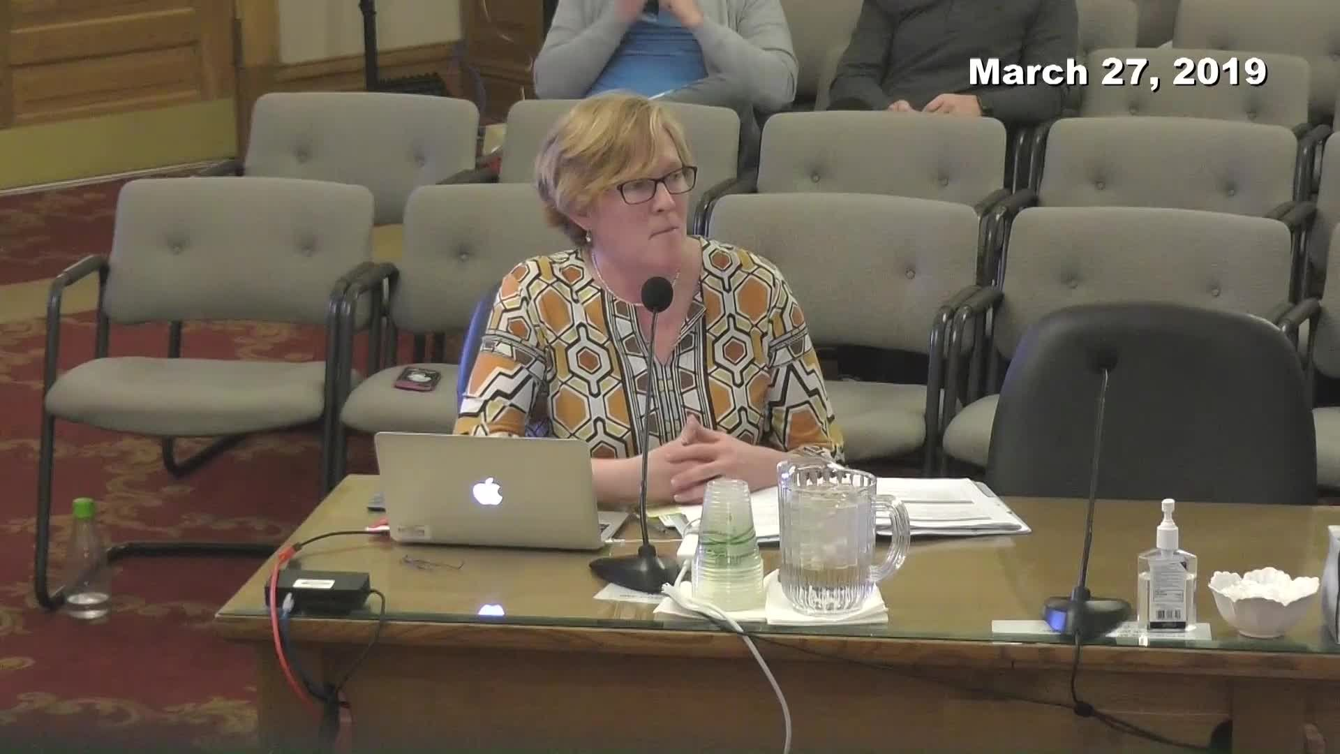 Planning Commission Meeting - 03/27/2019